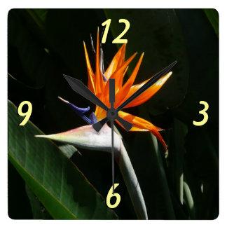 Flor tropical anaranjada de la ave del paraíso reloj cuadrado