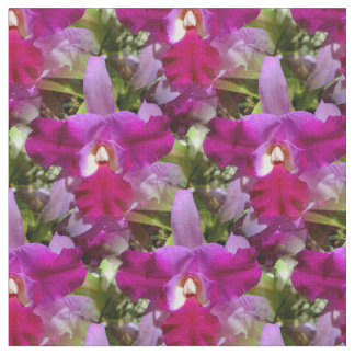 Flor tropical de la orquídea de Cattleya Telas