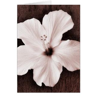 Flor tropical de la sepia hawaiana blanca del tarjeta pequeña