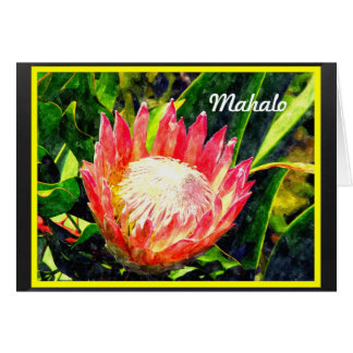 Flor tropical de rey Protea de Maui Hawaii, Mahalo Tarjeta De Felicitación