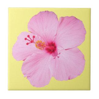 Flor tropical del hibisco rosado azulejo cuadrado pequeño