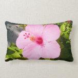 Flor tropical del hibisco rosado cojin
