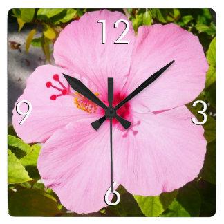 Flor tropical del hibisco rosado reloj cuadrado