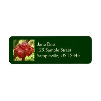 Flor tropical del jengibre rojo de la antorcha etiqueta de remite
