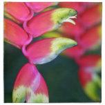Flor tropical roja brillante servilletas imprimidas