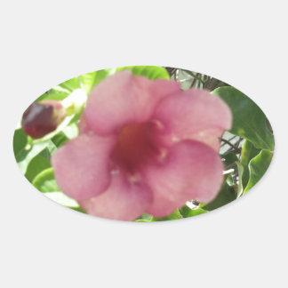 Flor tropical rosada pegatina ovalada