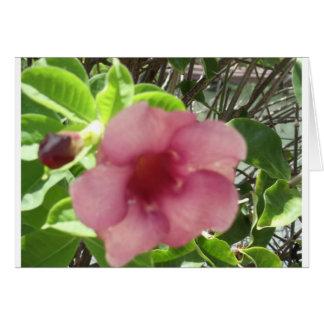 Flor tropical rosada tarjeta de felicitación