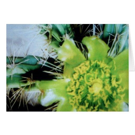 Flor verde/amarilla del cactus tarjeta de felicitación
