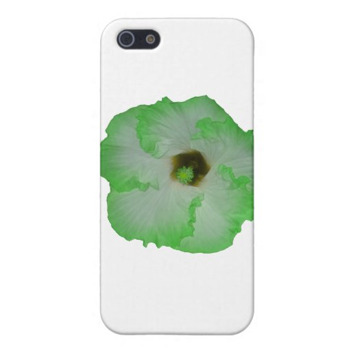 Flor verde del hibisco iPhone 5 coberturas