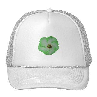 Flor verde del hibisco gorra