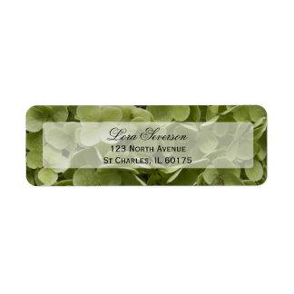 Flor verde del Hydrangea Etiquetas De Remite