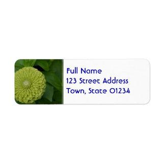 Flor verde floreciente del Zinnia Etiqueta De Remite