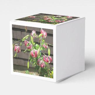 Flor verde marrón del jardín del lirio paquete de regalo