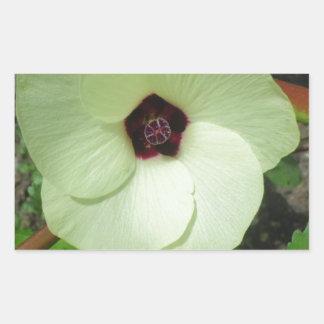 Flor verde natural