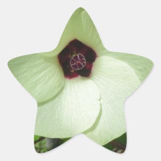 Flor verde natural pegatina en forma de estrella