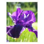 Flor violeta del iris membretes personalizados