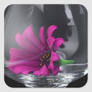 Flor violeta hermosa embalada en cristal pegatina cuadrada