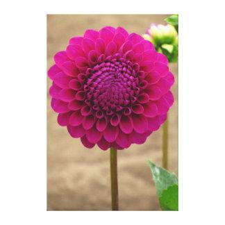Flor violeta hermosa impresión en lienzo