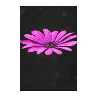 Flor violeta hermosa impresiones en lona