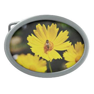 Flor y abeja amarillas del cosmos hebillas cinturón ovales