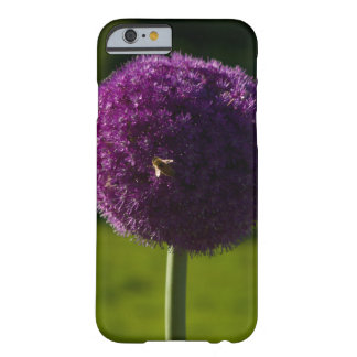 flor y abeja de la cebolla púrpura del caso del funda de iPhone 6 barely there