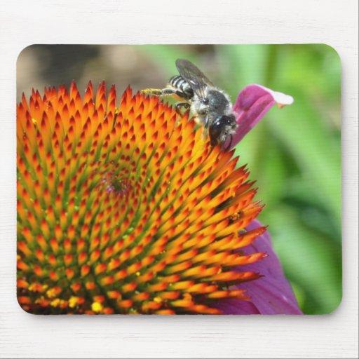 Flor y abeja mousepads