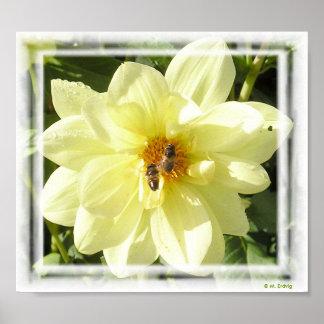 Flor y abejas impresión o poster