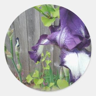 Flor y brotes del iris pegatina redonda