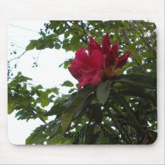 Flor y brotes rojos del rododendro alfombrilla de ratones