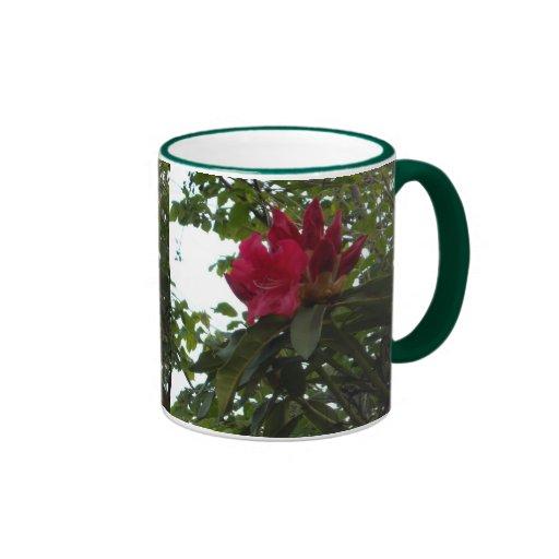 Flor y brotes rojos del rododendro tazas