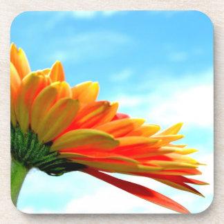 Flor y cielo del Gerbera Posavasos De Bebidas