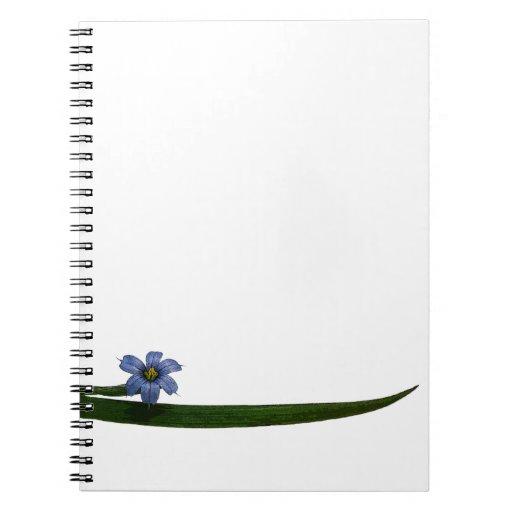 Flor y hoja de la hierba de ojos azules cuaderno
