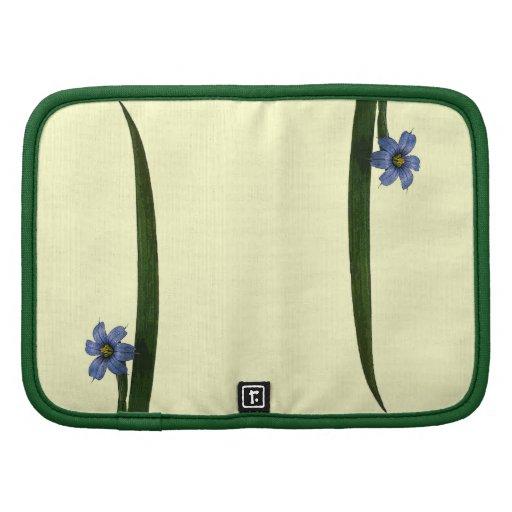 Flor y hoja de la hierba de ojos azules organizador