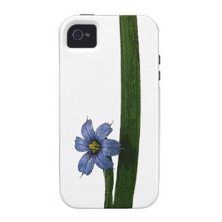 Flor y hoja de la hierba de ojos azules Case-Mate iPhone 4 funda