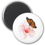 flor y mariposa imán