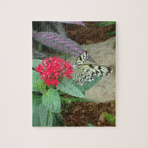 Flor y mariposa rompecabezas con fotos