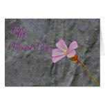 Flor y piedra rosadas delicadas del día de San Val Tarjetas