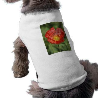 Flor y significado de la amapola playera sin mangas para perro
