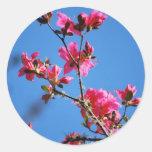Flor y significado de la azalea etiquetas redondas