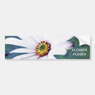 Flor y significado de la margarita pegatina para auto