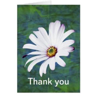 Flor y significado de la margarita tarjeta de felicitación