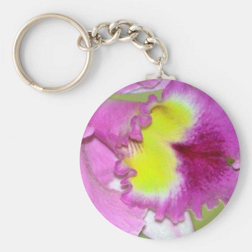 Flor y significado de la orquídea llavero