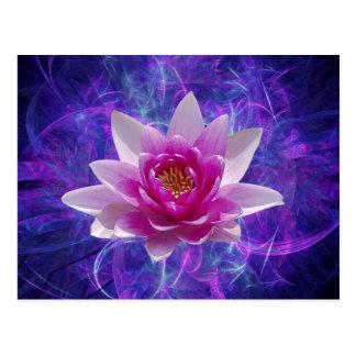 Flor y significado de loto rosada tarjetas postales