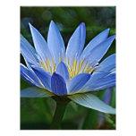 Flor y significado de Lotus Membretes Personalizados
