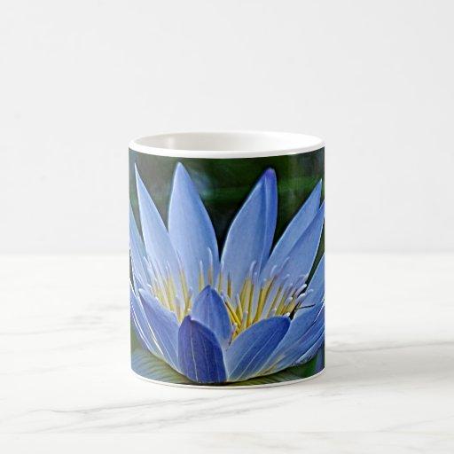 Flor y significado de Lotus Taza
