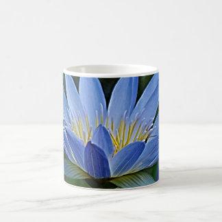 Flor y significado de Lotus Taza De Café