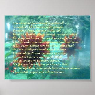 Flor y soneto póster