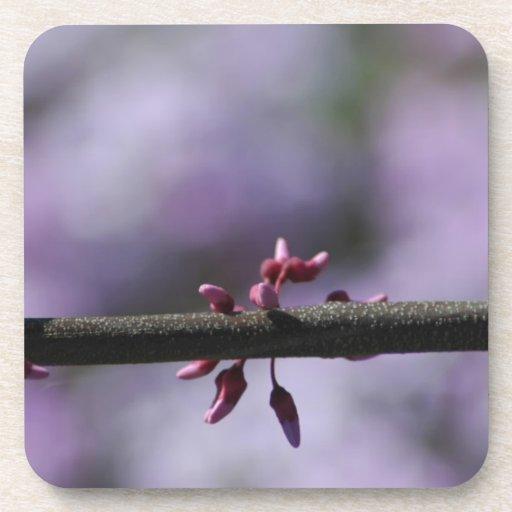 Flor y tronco púrpuras posavasos