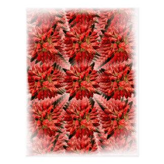Flora 015 postcard