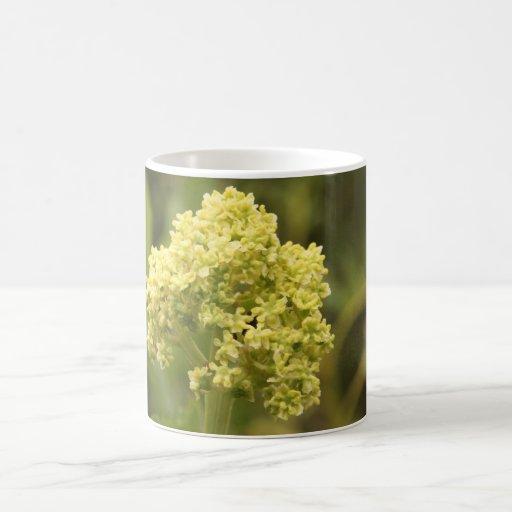 Flora amarilla taza clásica
